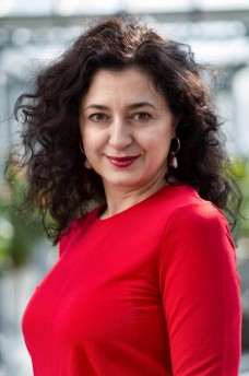 Turkse journaliste Ece Temelkuran